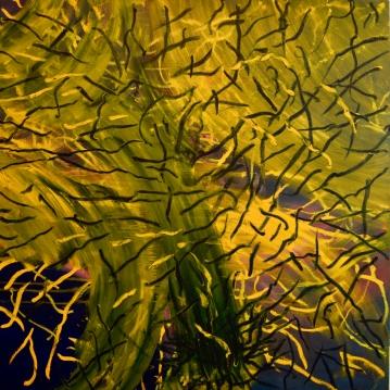 Sikiäminen III, 2019. Öljy kankaalle / Oil on canvas, 100 cm x 100 cm.